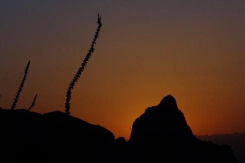 Big Bend sunset.  Photo by Warren Jones.