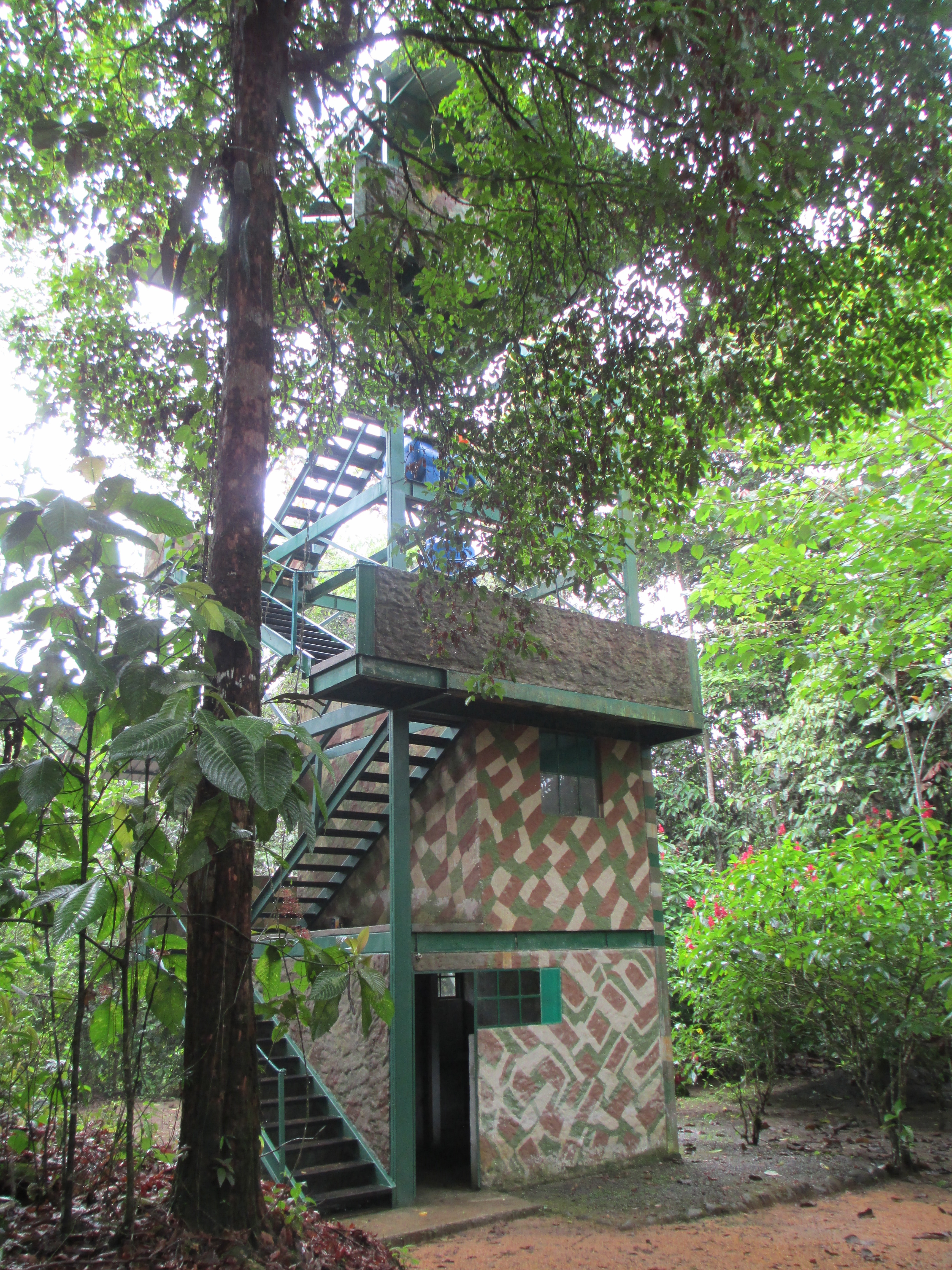 The tower at Rio Silanche