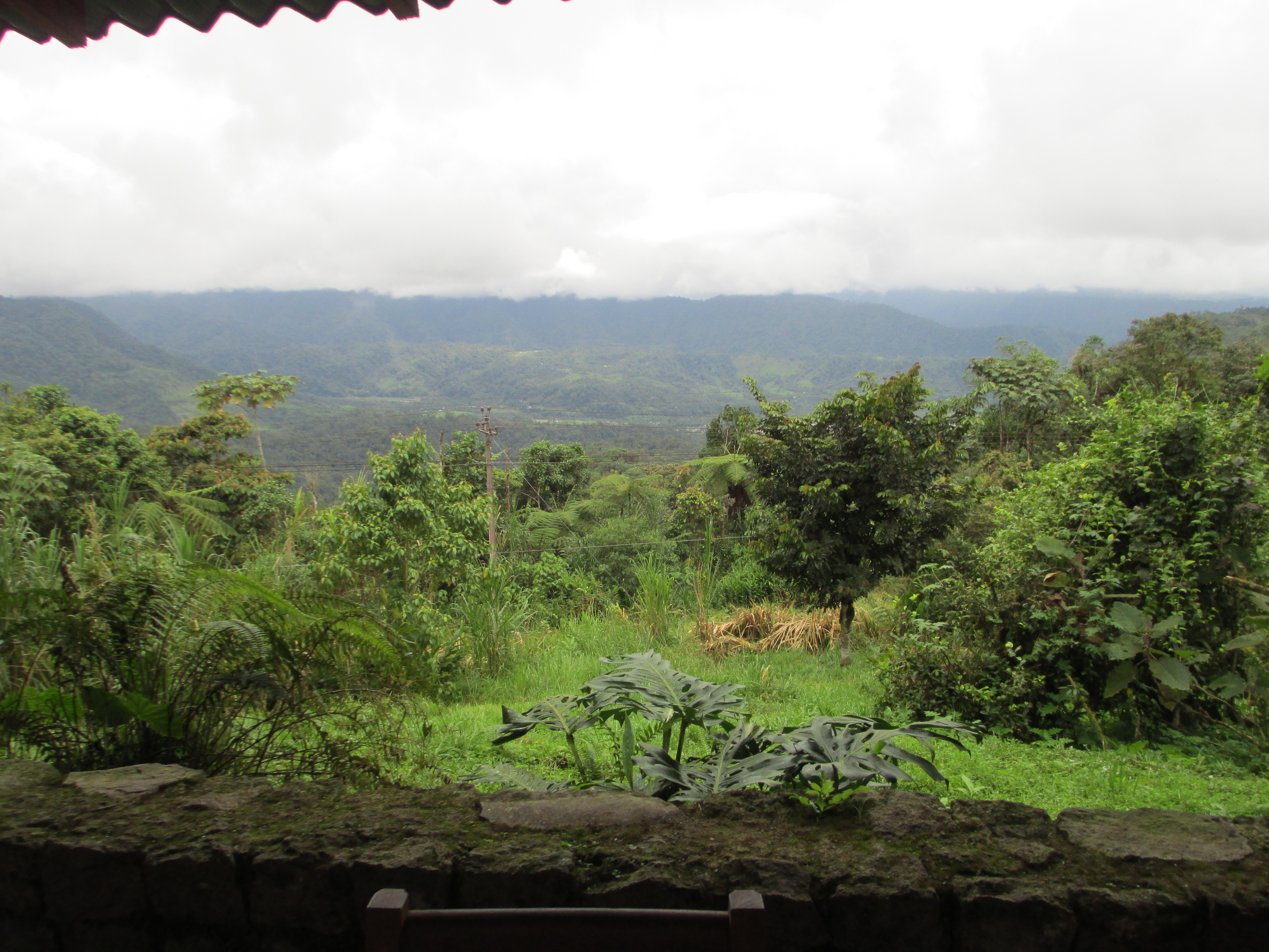 View from Sachatamia Lodge