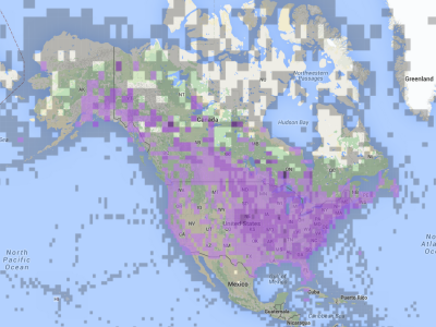 Northern Flicker (Yellow-shafted) eBird range map