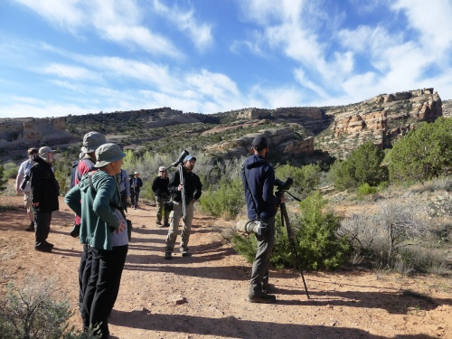 Birding on the beautiful Devil's Kitchen Trail in Colorado National Monument.