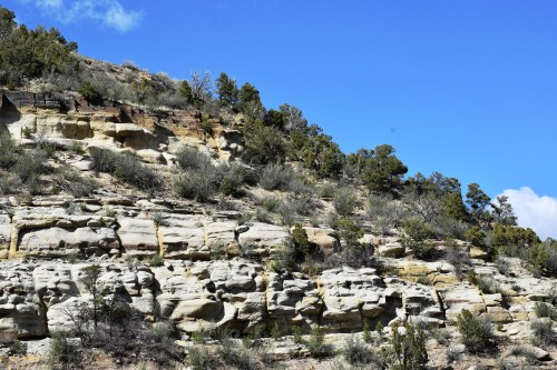 The trail at Climax Canyon Park & Nature Trail is up the side of a mountain. Photo by Derek Hudgins.