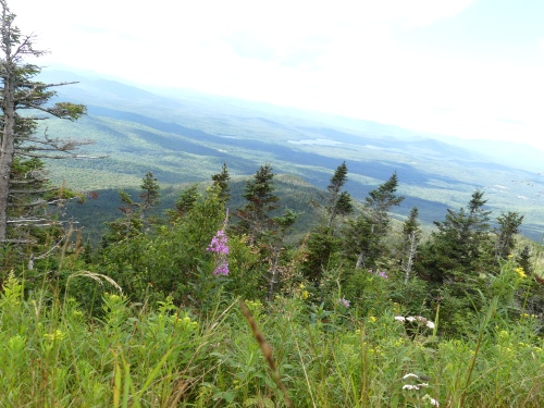 Another scenic view from the road up Whiteface Mountain
