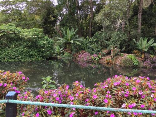 Garden at Savegre Hotel